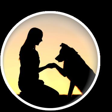 service d'euthanasie vétérinaire